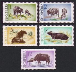 Albania Water Buffaloes 5v SG#882-886 MI#921-925