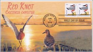SC 4991, 2015, Coastal Birds, Red Knot, FDC, BW, 15-171