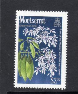 MONTSERRAT #607