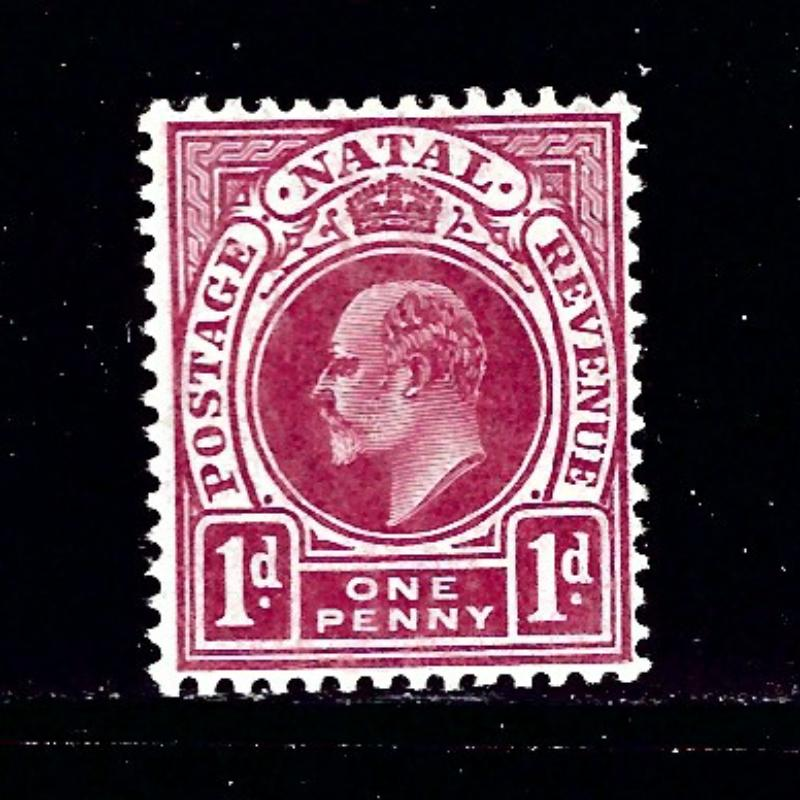 Natal 105 MH 1904 issue
