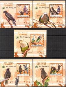 {098} Comoros 2009 Birds Parrots 5 S/S Deluxe MNH**