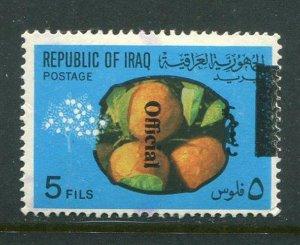Iraq #O240 Used