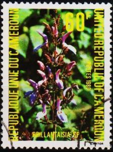 Cameroun. 1980 60f. S.G.884 Fine Used