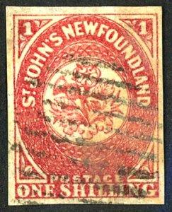 New Foundland #23