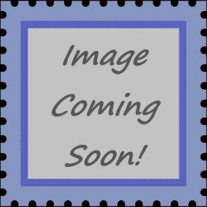 Central Africa - Raphael, Madonna Goldfinch - Souvenir Sheet - 3H-080