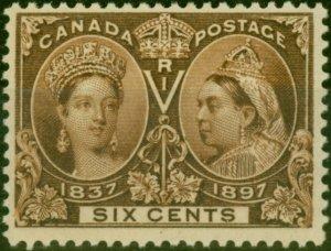 Canada 1897 6c Brown SG129 Fine Mtd Mint