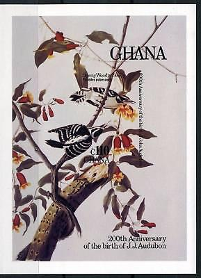 GHANA SCOTT# 984 BIRDS AUDUBON IMPERF S/SHEET  MNH