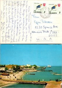 Gambia, Picture Postcards, Birds