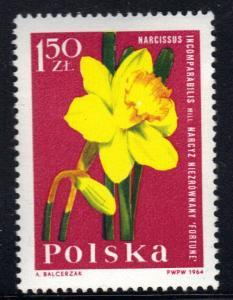 Poland   #1286   MNH   1964   garden plants 1.50z