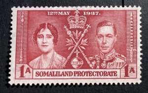 AlexStamps  SOMALILAND PROTECTORATE #81 VF Mint