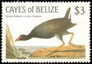 Cayes of Belize #22-25, Complete Set(4), 1985, Birds, Never Hinged