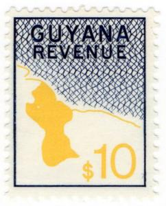 (I.B) British Guiana (Guyana) Revenue : Duty Stamp $10