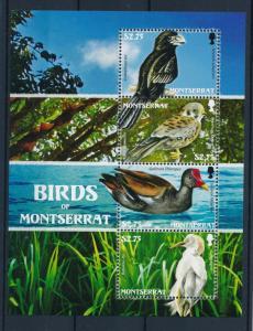 [40112] Montserrat 2009 Birds Vögel Oiseaux Ucelli   MNH Sheet