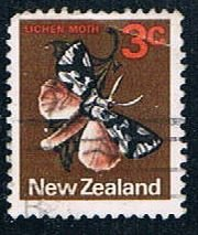 New Zealand Flowers (NP29R701)