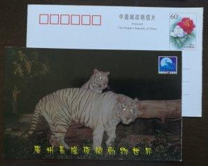 Bengal White Tiger,China 2001 guangzhou changlong night zoo pre-stamped card