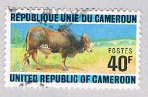 Cameroun 588 Used Zebu bull 1974 (BP2807)