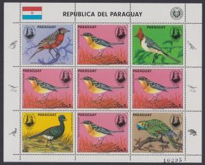 Paraguay Birds Birth Bicentenary of. Audubon Sheetlet SC#2142