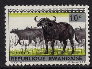 Rwanda  #55   1964  MNH animals  10c on 20c  buffaloes