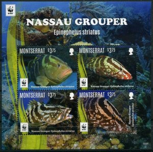 Montserrat 2016 marine life fish fauna WWF collective s/s MNH