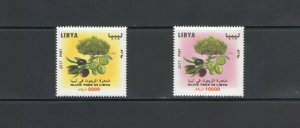LIBYA: Sc. 1826-27 /**OLIVES & OLIVE TREES**/ High Face Value Set of 2 / MNH.
