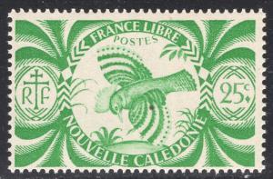 NEW CALEDONIA SCOTT 254