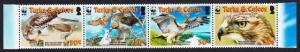 Turks and Caicos Birds WWF Red-tailed Hawk Strip of 4v SG#1870-1873 SC#1482a-d