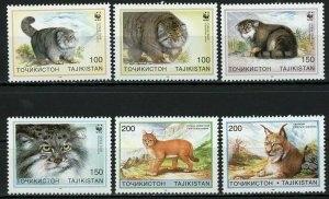 Tajikistan Cat Pet Felis Chaus Felis Lynx Serie Set of 6 Stamps MNH