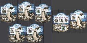 LX571 2015 SIERRA LEONE BIRDS PENGUINS !!! GOLD KB+BL+5 UV CARDBOARD MNH