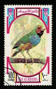 Bird, Ras al-Khaimah (ТS-2251)
