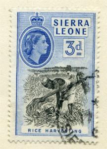 SIERRA LEONE;  1956 early QEII issue fine used value 3d.