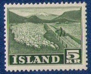 5Kr 1950 MNH Iceland Sc 268 Flock Of Sheep - Island Xtra Fine CV $45.00