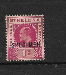 ST HELENA  1902  1d   KEVII   MLH  SPECIMEN   SG 54s