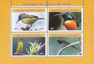Chad - 2019 Sunbirds of Africa - 4 Stamp Sheet - 3B-733