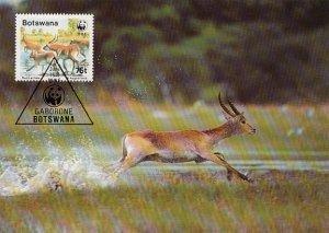 Botswana 1988 Maxicard Sc #435 75t Red lechwe antelope WWF