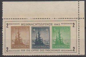 Mi:100/2;Type 2;1945;U/M;Cat £ 450.00