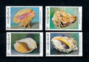 [99632] Bahamas 1996 Marine Life Sea shells Year 1997  MNH