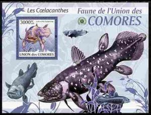 Comoro Islands MNH S/S Fish Marine Life 2009