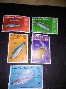 Falkland islands Shelf Fish