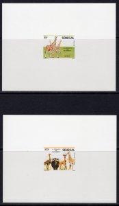 Senegal 1986 Sc#691/695 Giraffes/Buffaloes/Ostriches 5 DELUXE Souvenir Sheet MNH