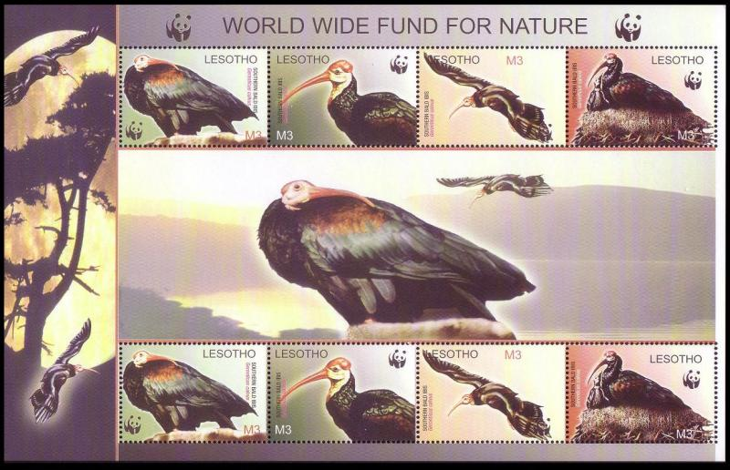 Lesotho WWF Southern Bald Ibis Birds Sheetlet of 2 sets SG#MS1938 SC#1336 a-d