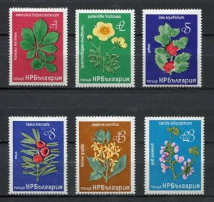 Bulgaria 1976 Chestnut Holly Flowers Plants Nature Flora Stamps MNH Mi 2540-45