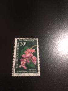 Cameroun sc 443 uhr Flower
