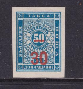Bulgaria a MNG 30s on 50s Post Due from 1893 (imperf)