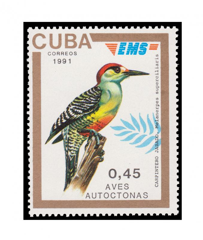 TOP GRADE SPECIAL DELIVERY EMS STAMP SET. CATALOG PRICE $95.50.  TOPIC: BIRD.