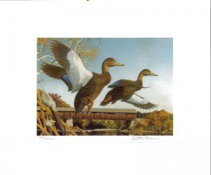 NEW HAMPSHIRE  #7 1989 STATE  DUCK  STAMP PRINT  BLACK DUCKS  by Robert Steiner