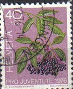 SWITZERLAND, 1976, used 40c. , Flowers