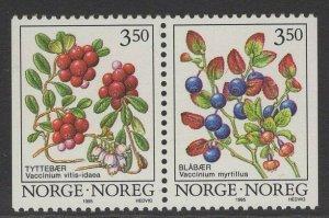 NORWAY SG1197/8 1995 WILD BERRIES MNH