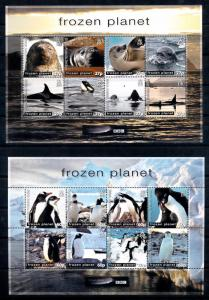[66866] British Antarctic Territory 2011 Marine Life Seals Whales Penguins  MNH