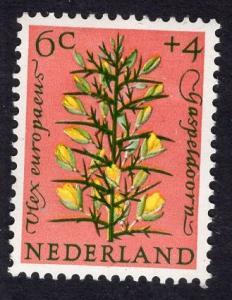 Netherlands   #B344  1960 MNH Cultural welfare flora flowers 6 ct gorse