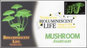 18-068, 2018, Bioluminescent Life, DCP, Mushroom, First Day Cover